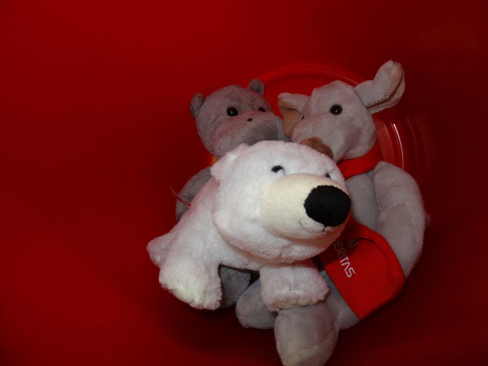 Ursus Maritimus (polar bear) with Hansel and Gretel