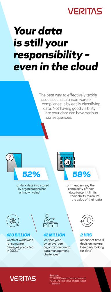 Veritas_Data_Vulnerabilities_Blog_Infographic.png