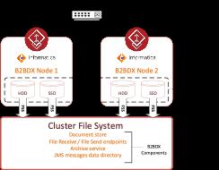 Figure 4. Informatica B2BDX HA deployment with InfoScale Enterprise using CFS and FSS shared storage