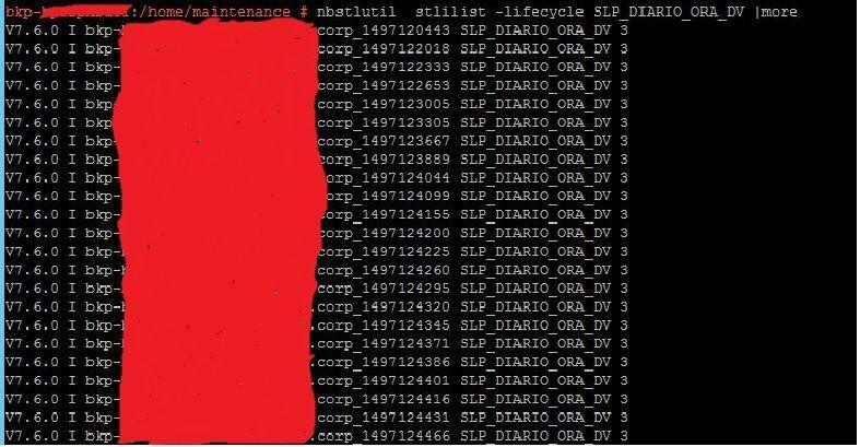 SLP_Example_2.jpg