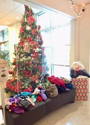 During this year's coat, hat, and mitten drive, Veritas' Roseville collected 37 coats, 35 hats, and 40 pairs of gloves and mittens.