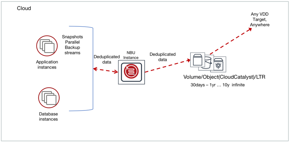 NetBackup architecture in the cloud.