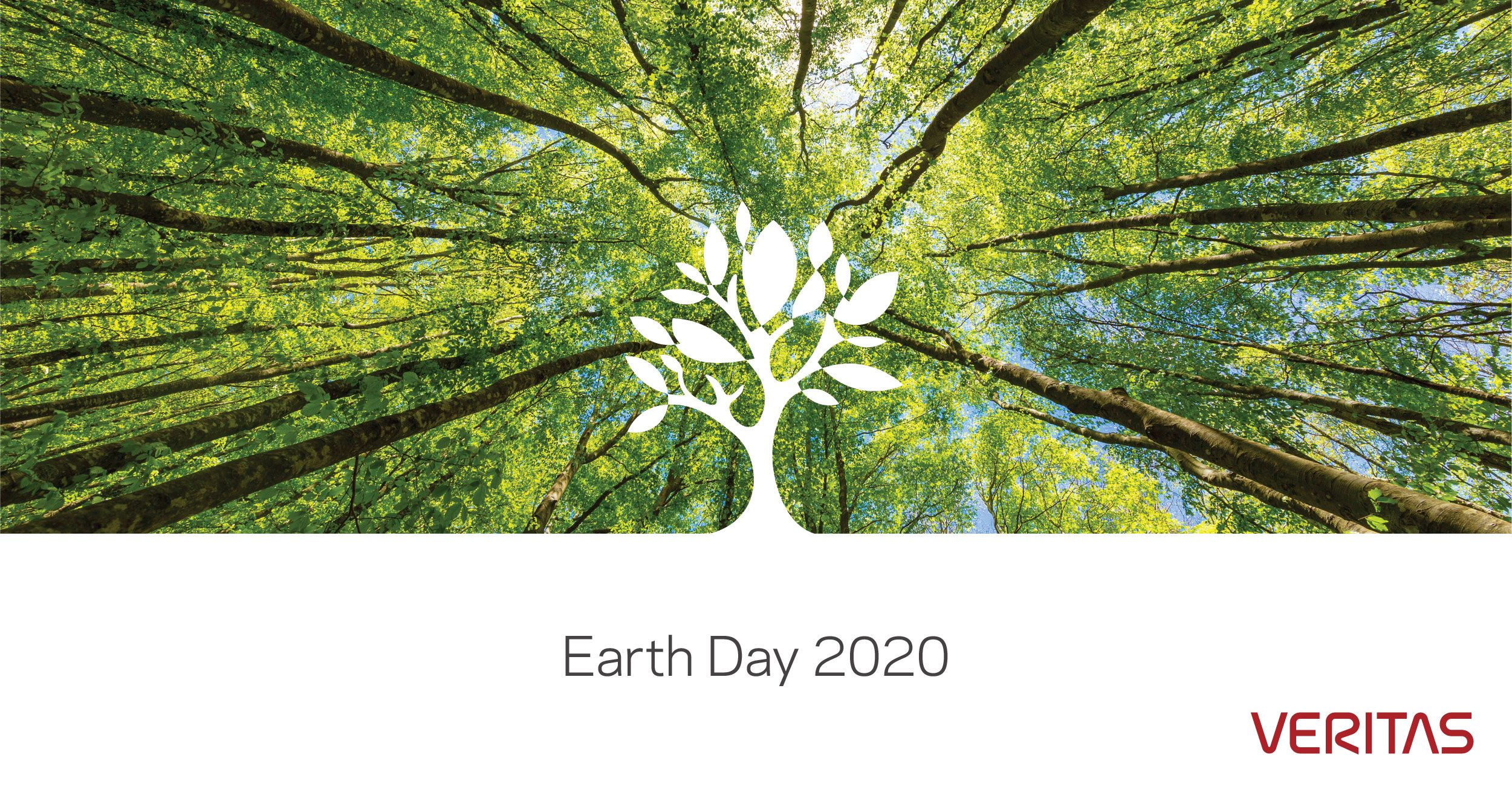 Veritas Celebrates Earth Day 2020