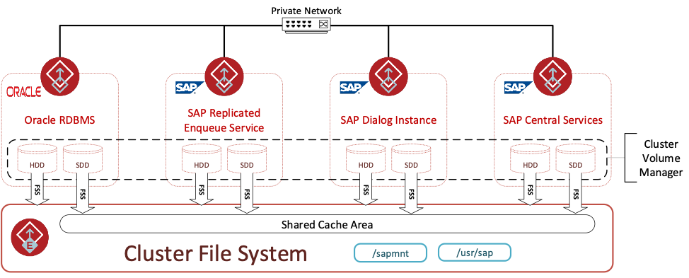 Figure 2. InfoScale Enterprise 4 node SAP and Oracle cluster using FSS