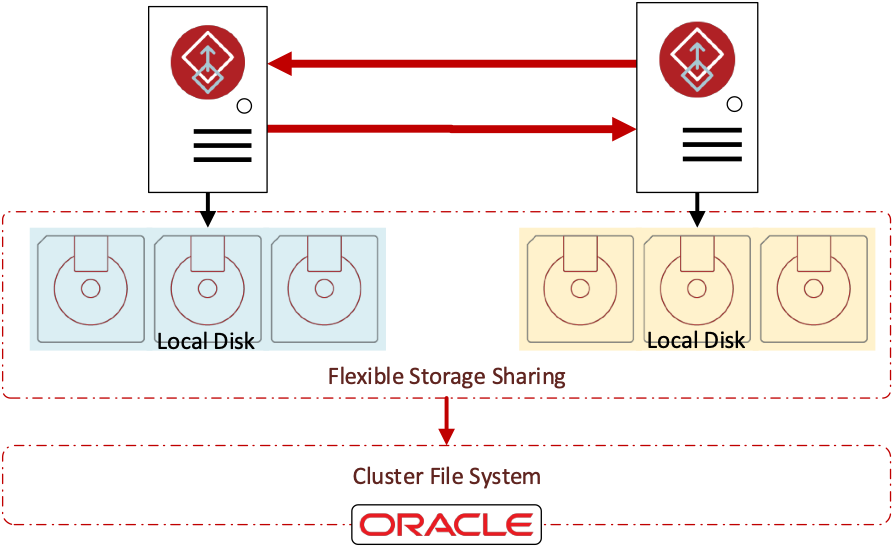 Figure 2 Shared Storage Created with Flexible Storage Sharing and Cluster File System
