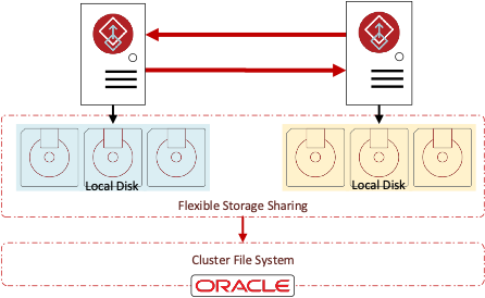 Figure 1 Flexible Storage Sharing and Cluster File System
